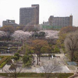 2006040101