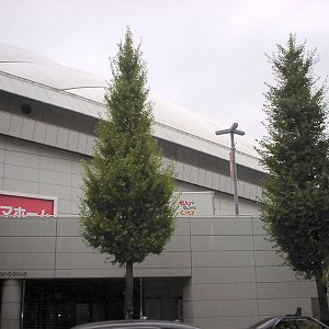 2008110918