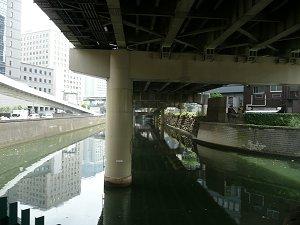 2009081411