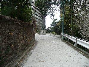 2009123114