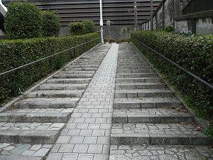 2009123118