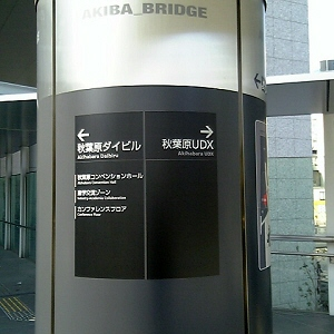 2006031304